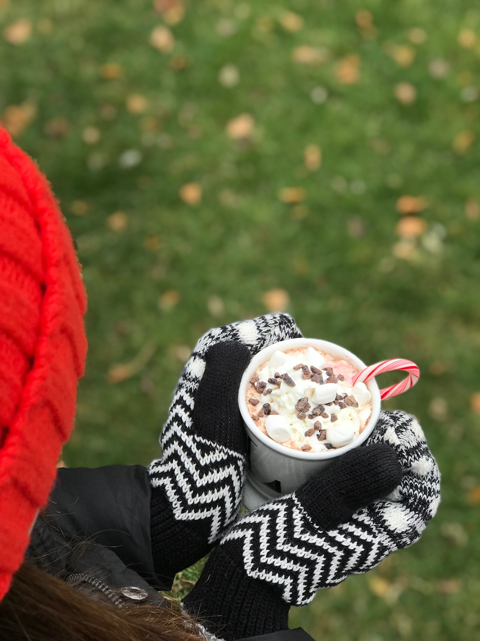 line & lee hot chocolate mix