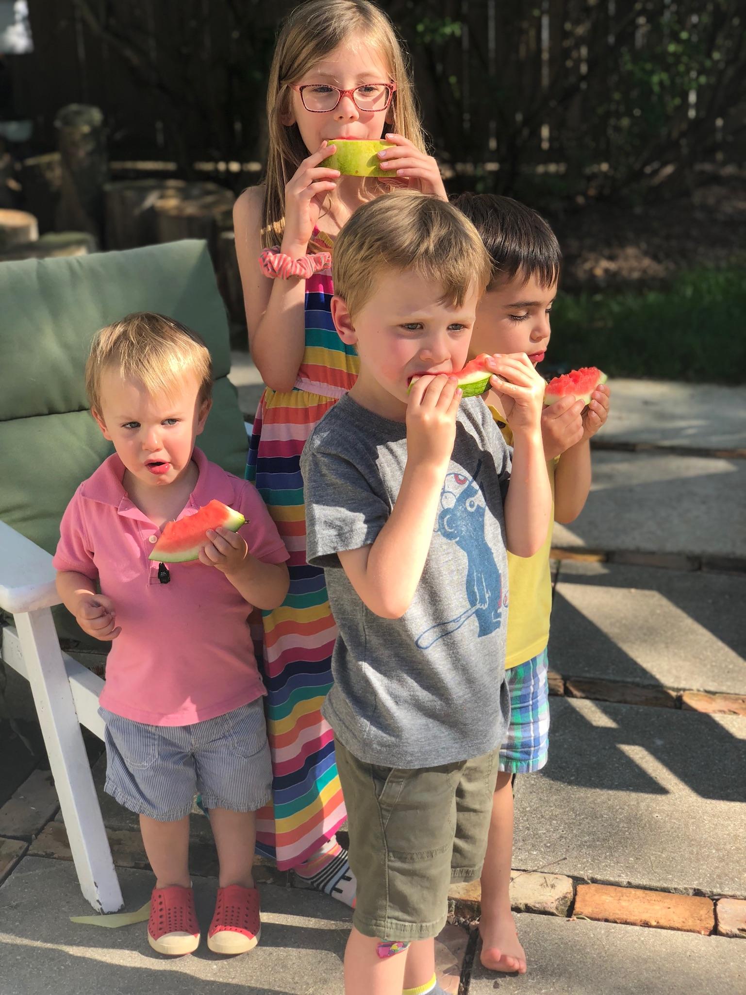 line & lee watermelon snacks