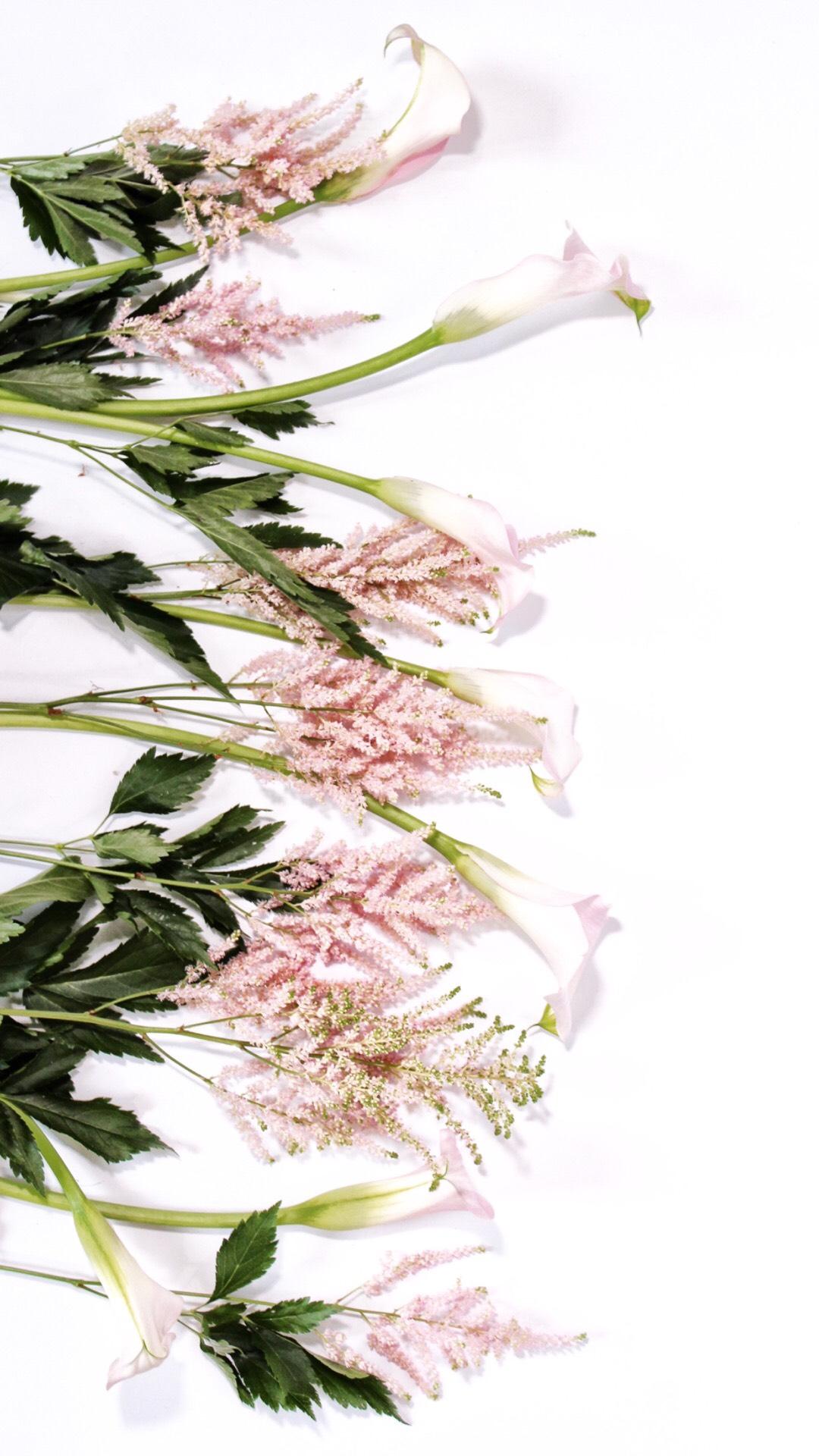 Flower Wallpaper.jpg