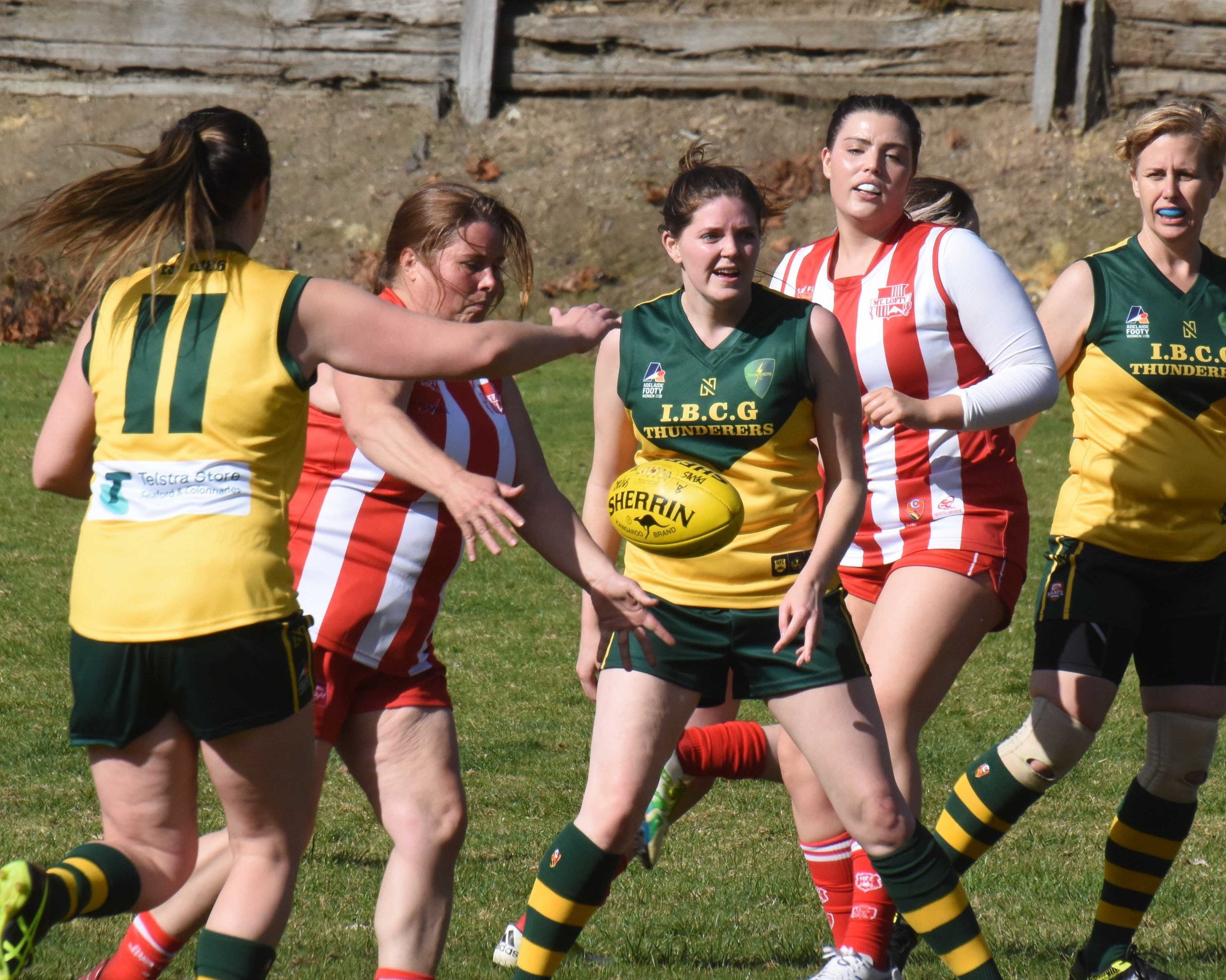 Mt Lofty game photo for Courier.jpg