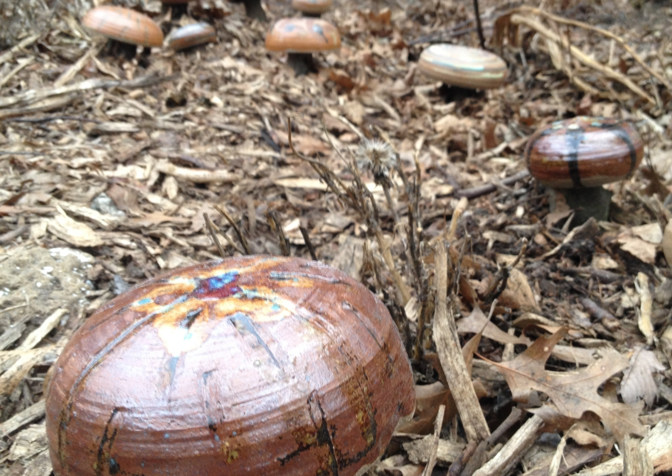 Integrate - Seam the beauty and flavor of the Fungal Queendom into your home landscapeAre you already an avid gardener who takes pride in your beautiful, urban landscape? Learn how mushrooms can be integrated into your existing garden space. Our permaculture inspired mushroom gardens are as aesthetically pleasing as they are abundant. Check out our Integrate page to see real and inspired ideas, set-up a consultation with us, and learn how mushrooms can naturally improve soil health (i.e. reduce the need for harmful chemicals).