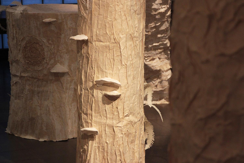 Unbroken Arbor Vitae