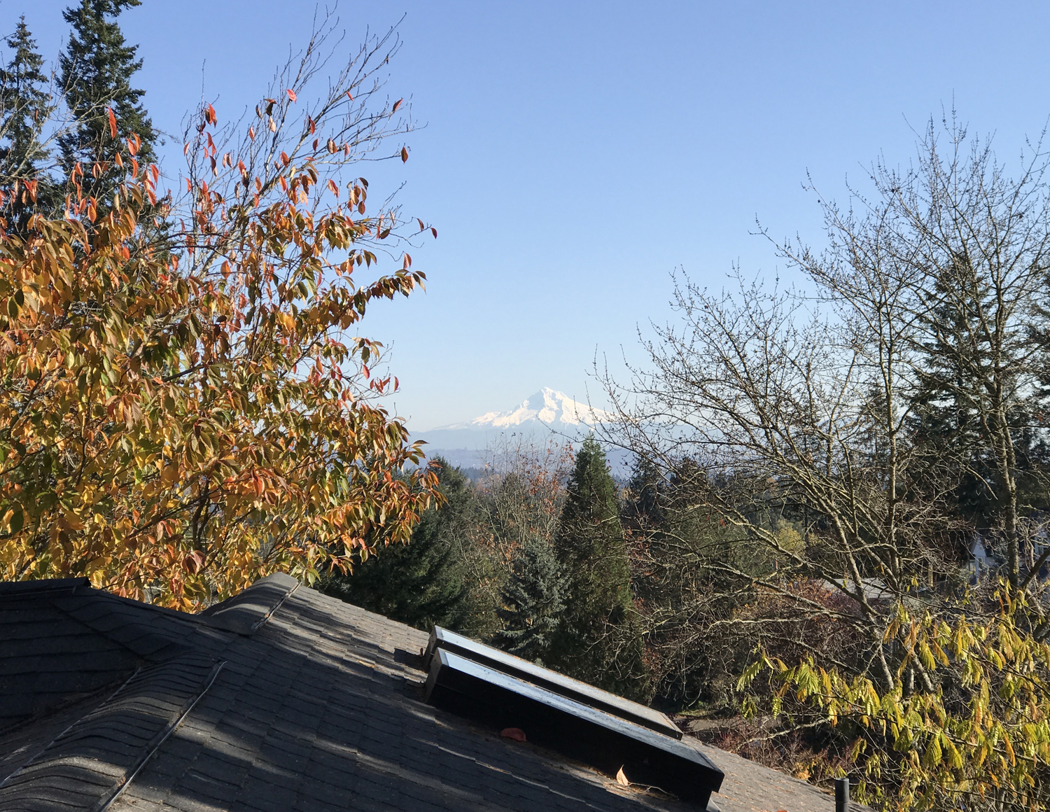 View of Mt. Hood from the loft.