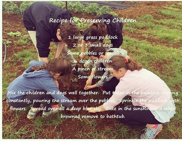 This recipe should be on every parents menu! . . . #farmkids #fun #school #naturalkids #kids #workshops #farmanimals #spring #byronbay #pigs #cows #flowers #beneficialbugs #veggies #chickens #herbs #bees #nature #organic #sustainable #ethical #cooking #craft #creating #sunflowers #gardens #healthy #happychickens