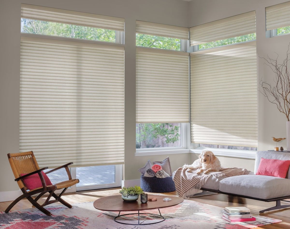 Top Down Vertical Blinds