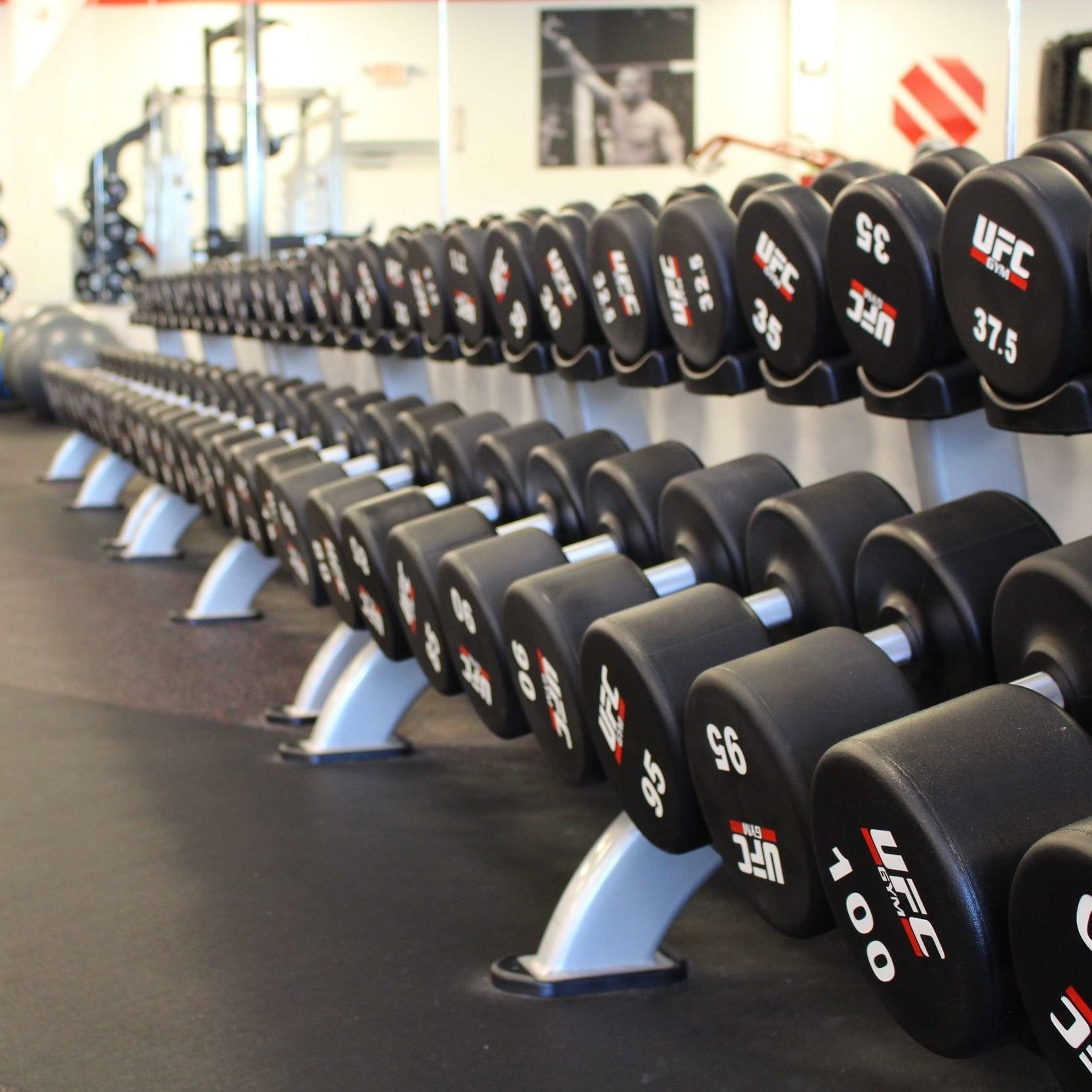 Cardio Weights Gym acrobatics