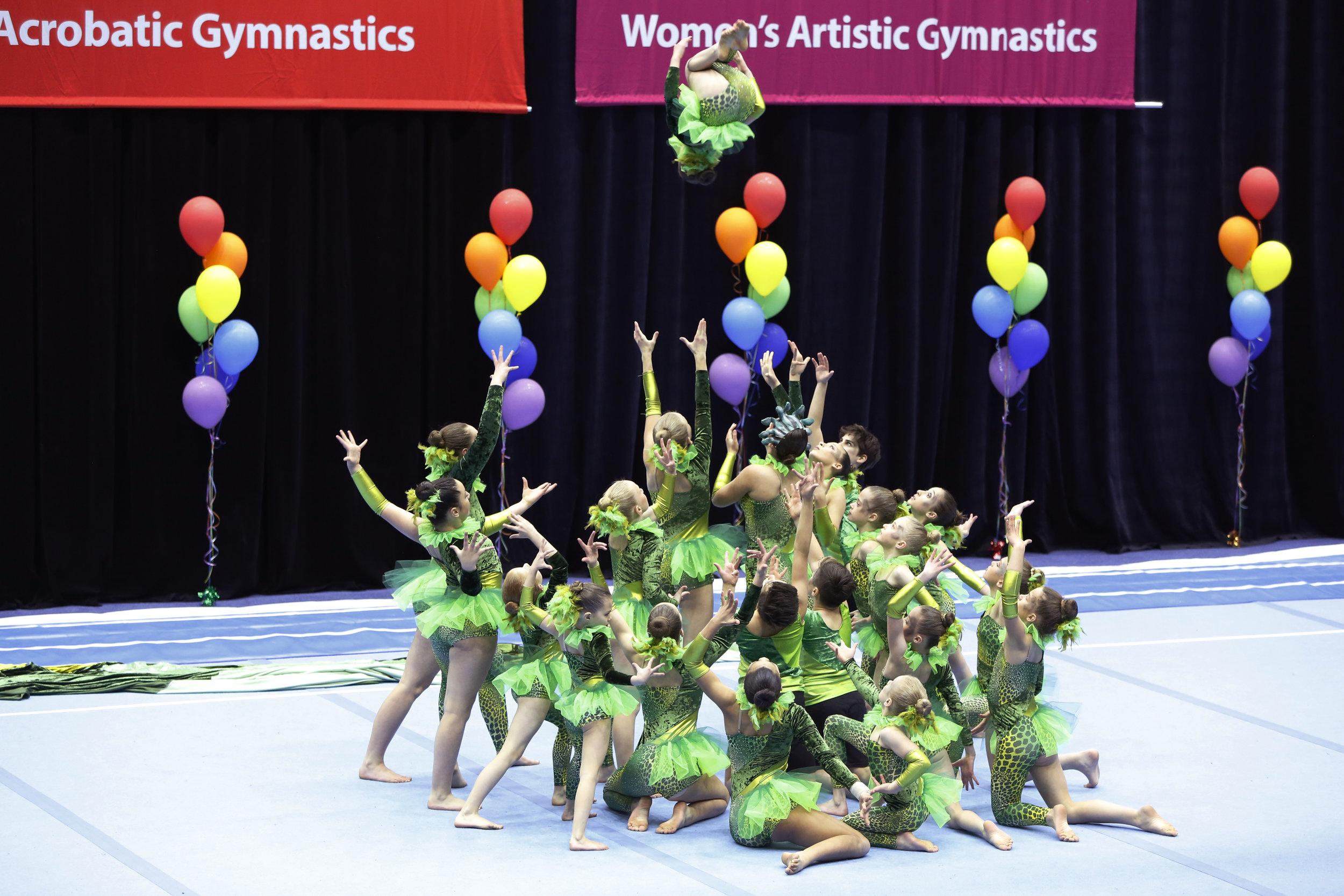 Performance Teams - JUNIOR, intermediate & SENIOR PERFORMANCE TEAMS