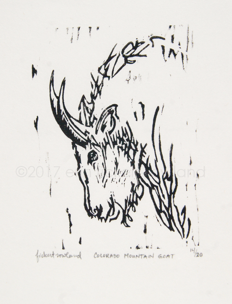 """""""Colorado Mountain Goat""""  Limited Edition of 20  3 in x 4 in  Matted to 5 in x 7 in"""