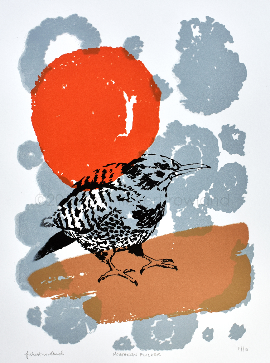 """Northern Flicker""  Limited Edition of 15  8 in x 11 in  Unmatted"