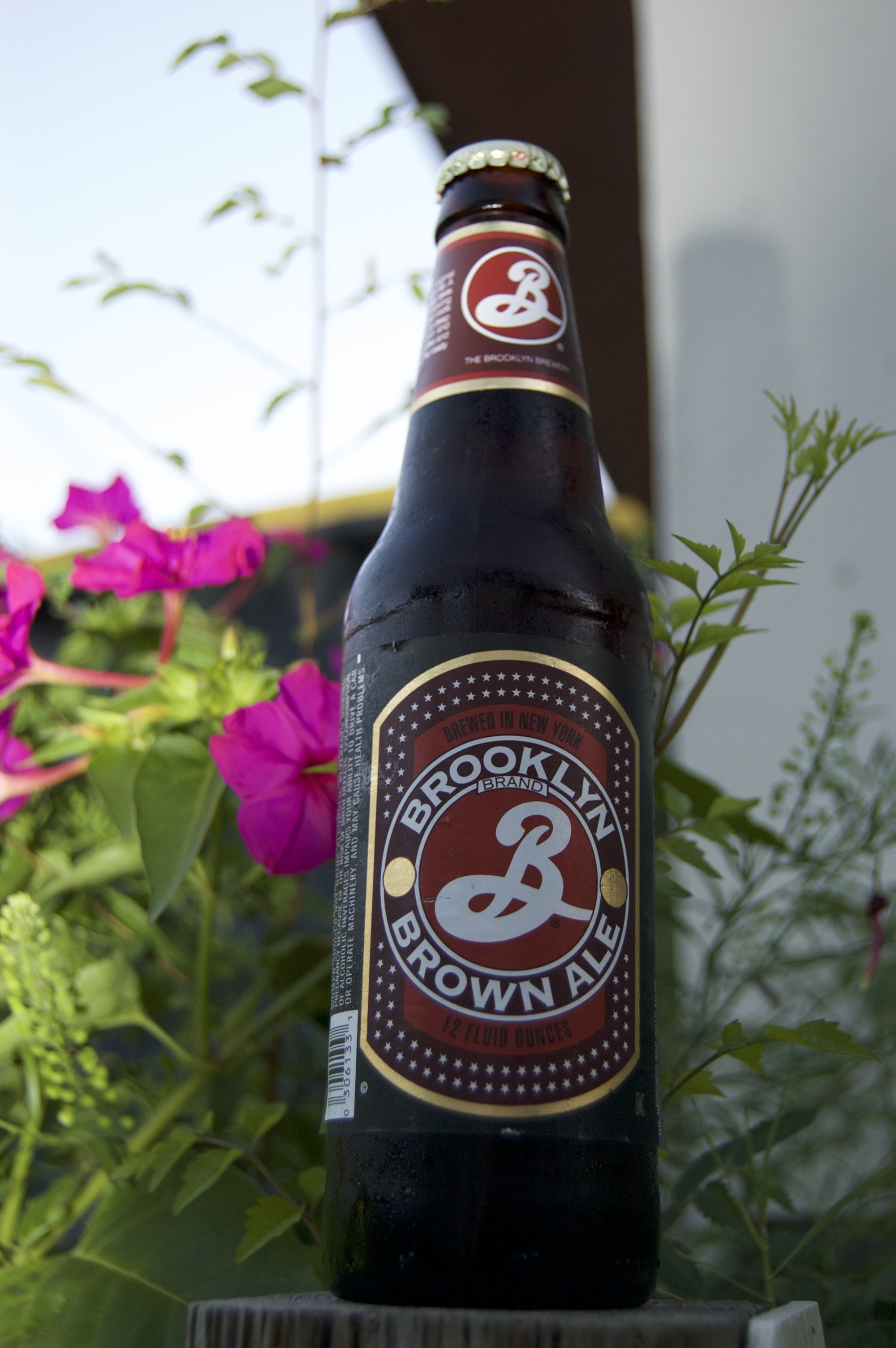 Brooklyn Brown Ale - May 2018Straight from New York to my Florida apartment. Smooth, a little hoppy, sweet and caramely. This is the kind of beer I'd like to have while playing a game of D&D, or re-watching Labyrinth.You remember Labyrinth right? My computer keeps spell checking me because I keep spelling it wrong. It looks like