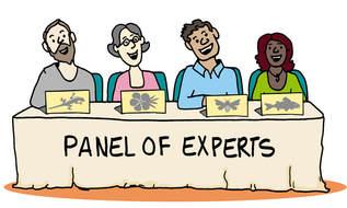 bdtool-expert-panel-cl2_10.jpg