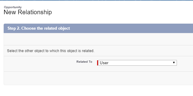 Lookup to the User object