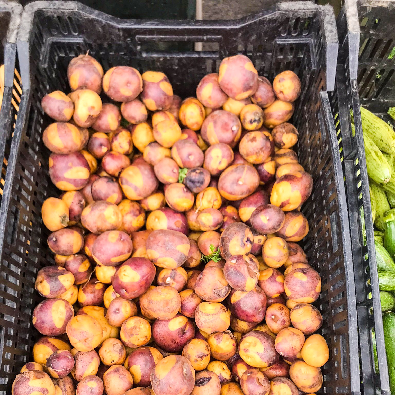 New to me variety of potato - they look semi-peeled, but it's just the coloration of the skin!