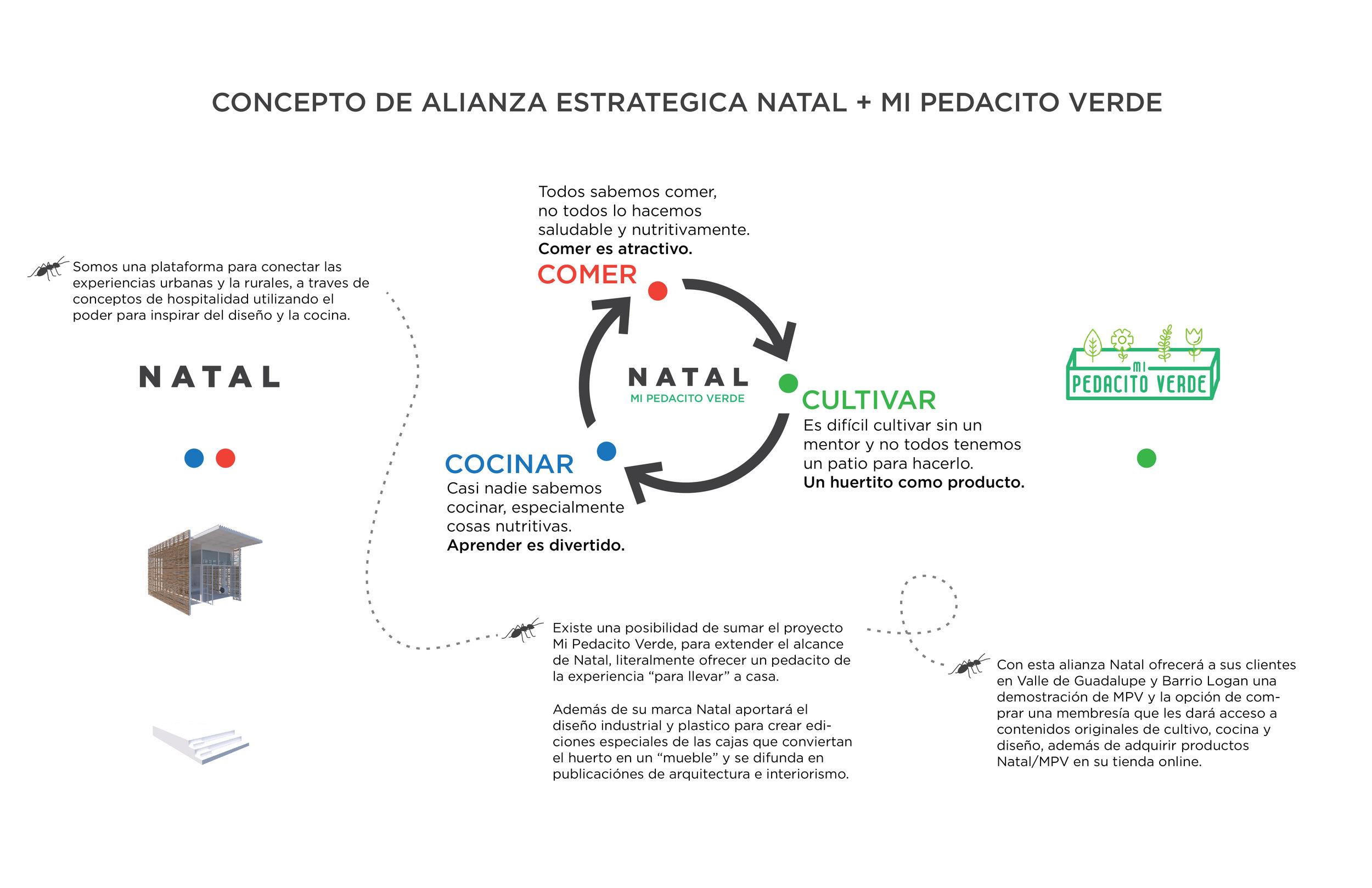 NATAL MI PEDACITO V1-01.jpg