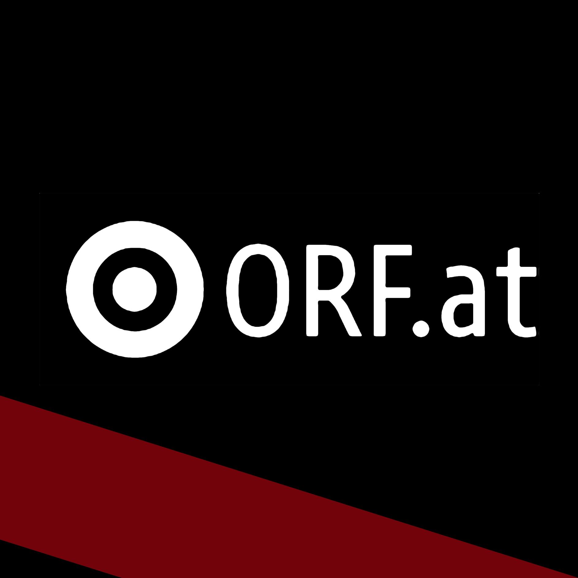 Salsburg ORF.at.jpg