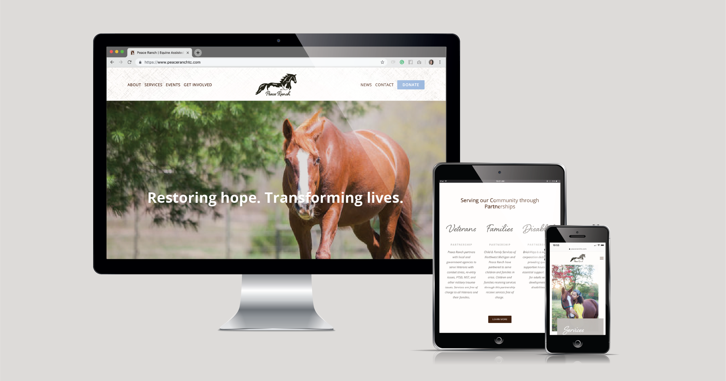 Current 120 web design and website development for Traverse City, MI nonprofit, Peace Ranch.