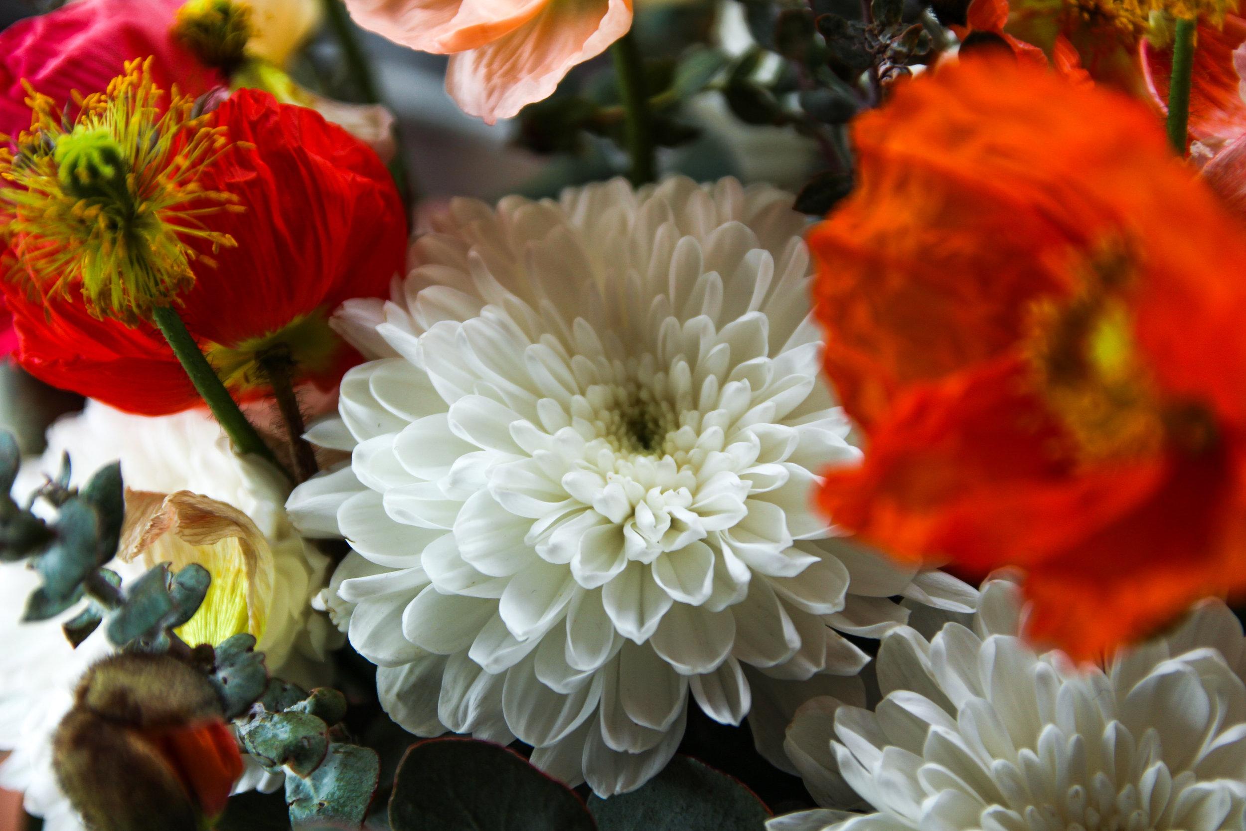 Melbourne, VIC,Australia- Local, seasonal flowers