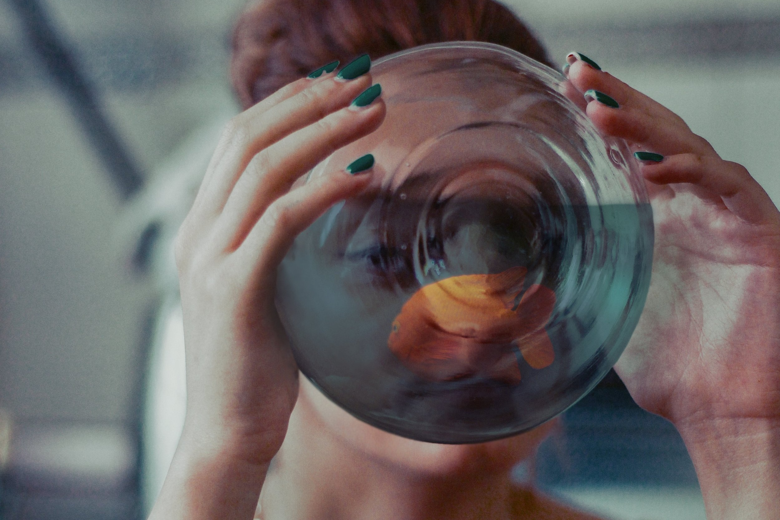 The Surrealism Dinner - Florian Schmitt & Vadik Marmeladov