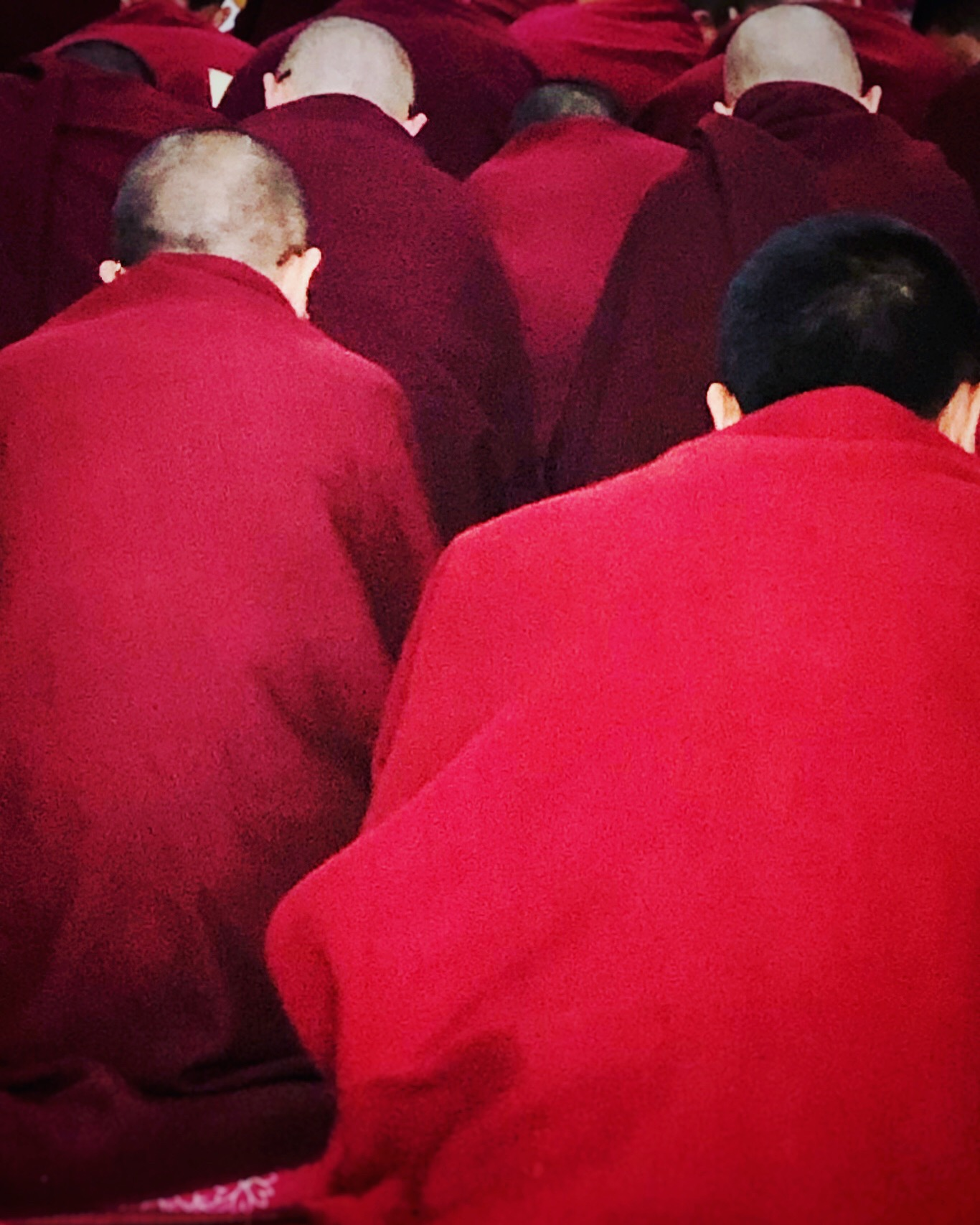 Tibetan Monks in Dalai Lama Monastry