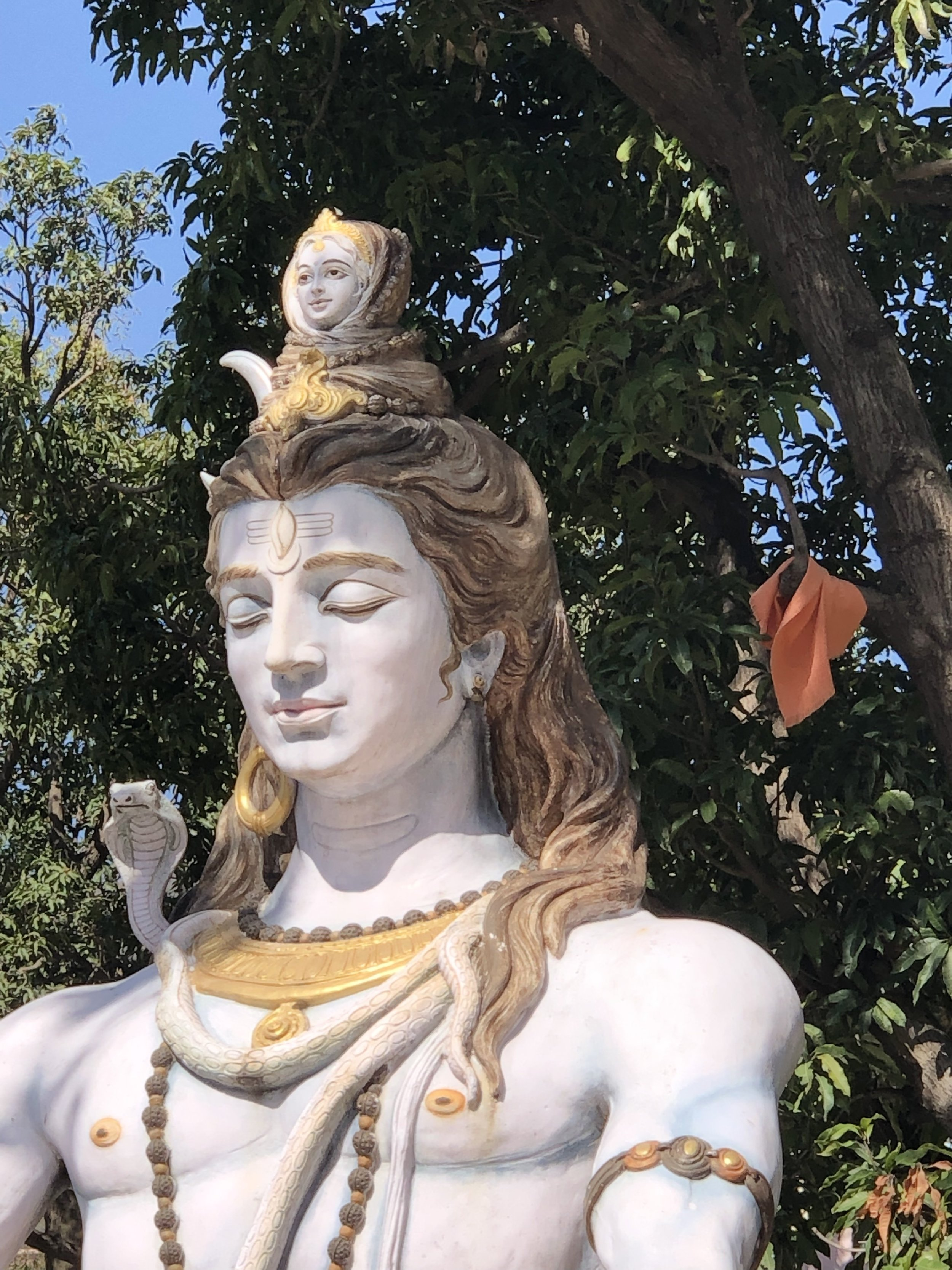 Ganga on Shiva's head.