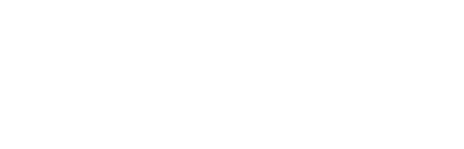 care-white-logo-horizontal.jpg