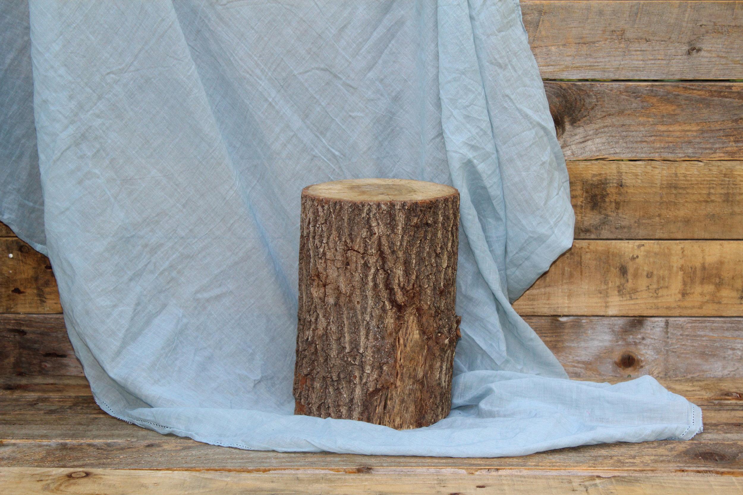 - Mini stump 24cm tall 17cm diameter£5