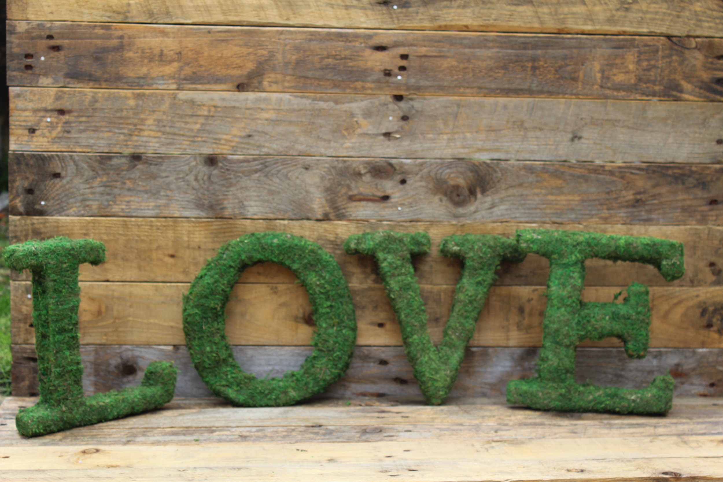 - Moss LOVE letters£20