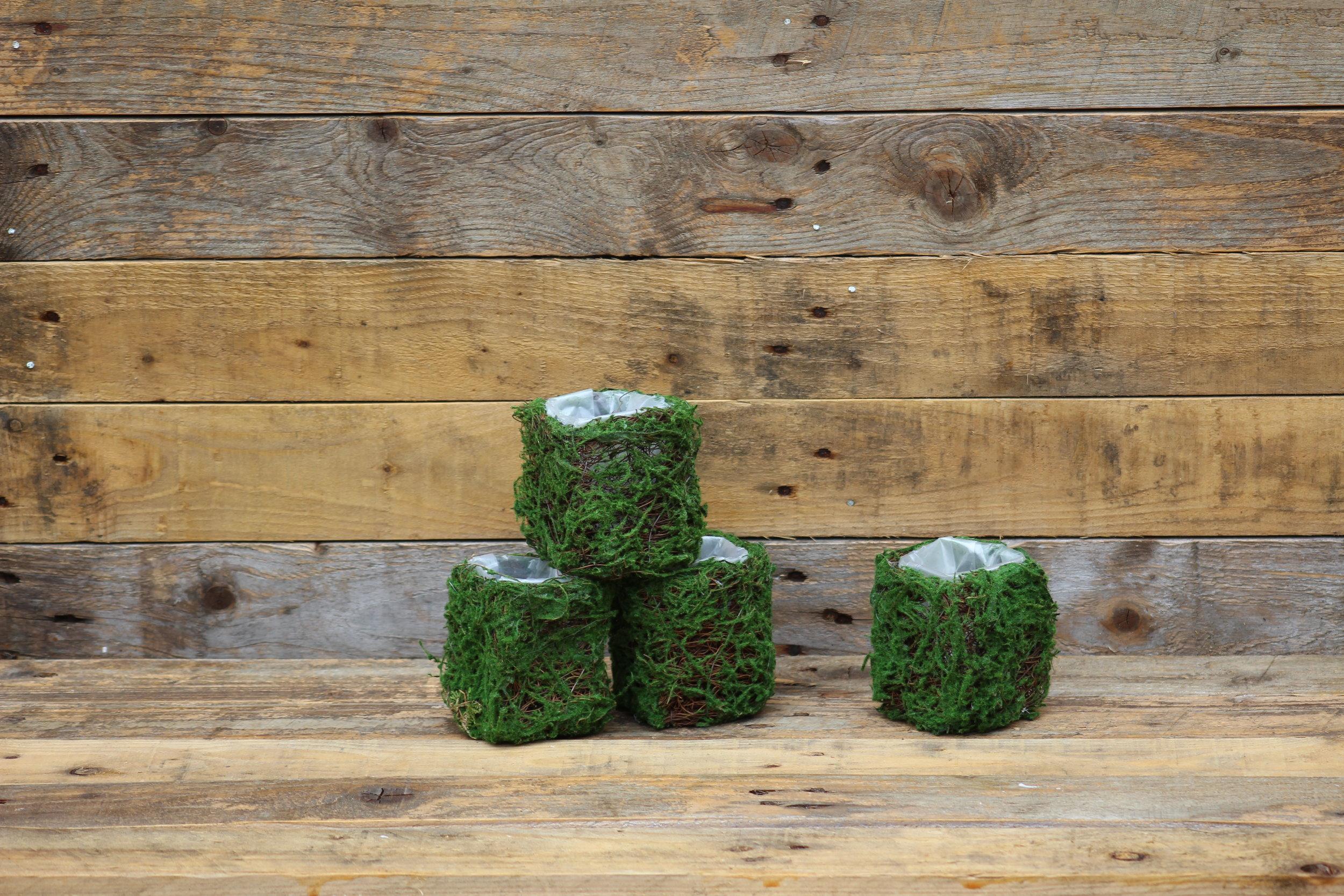 - Mini moss plantersx4 £1 each