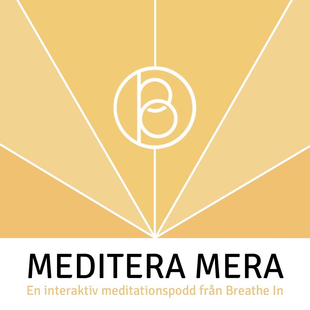 Meditera Mera Logo.jpg