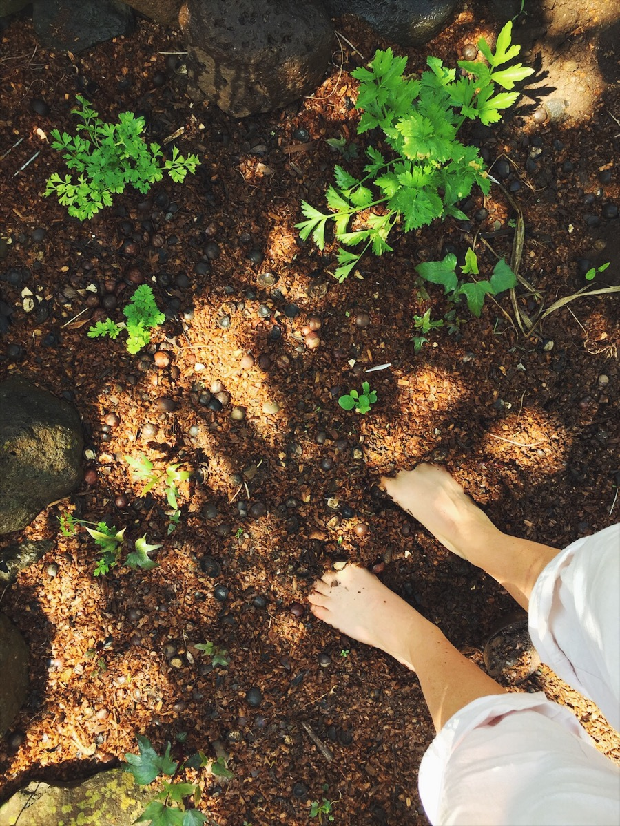 Barefoot in the garden, living off the grid on an organic farm in Maui, Hawaii.