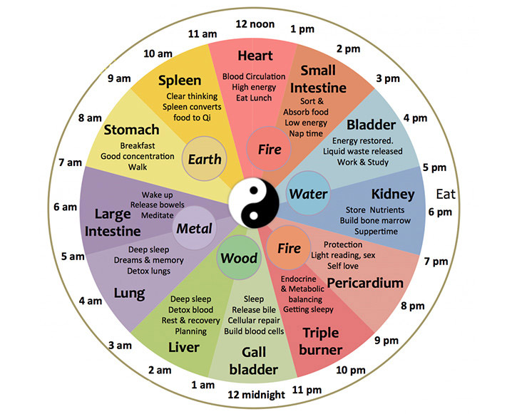 Chinese Body Clock.  Photo Credit: Five Seasons Medicine