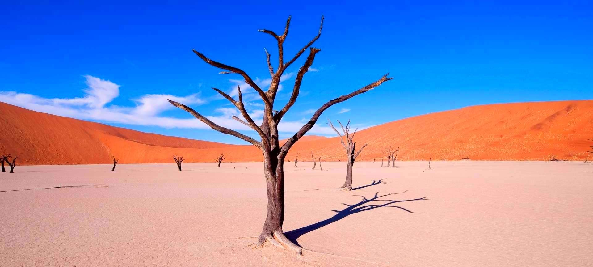 Sossusvlei, Namibia Desert, Africa