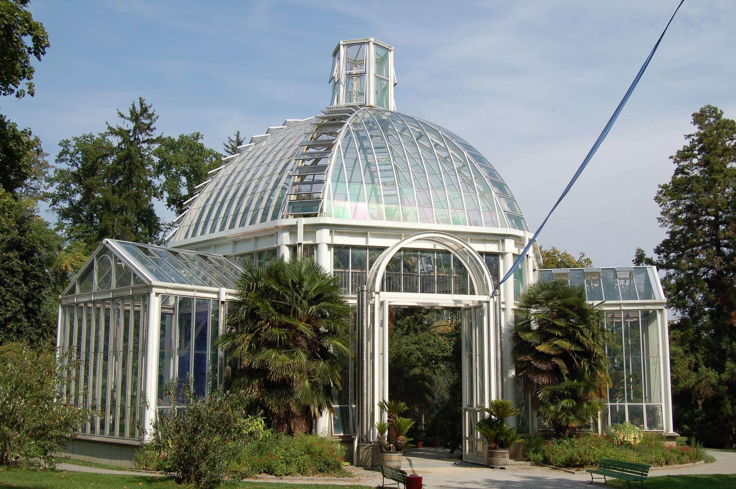 Greenhouse at the Botanical Gardens, Geneva.