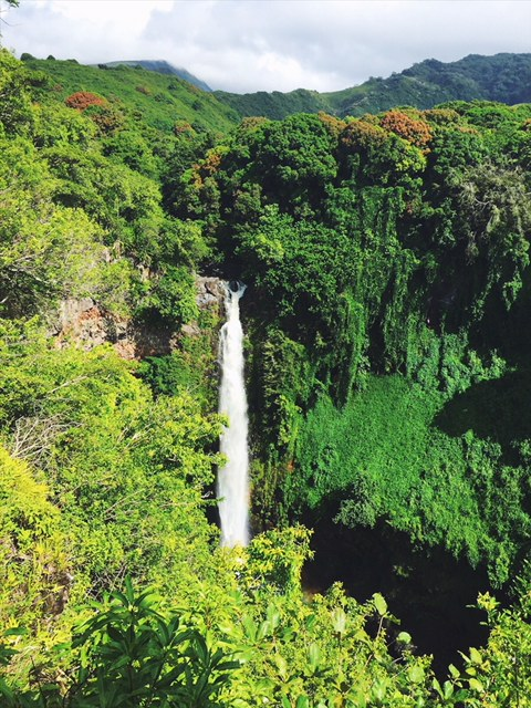 Epic waterfall in Hana!