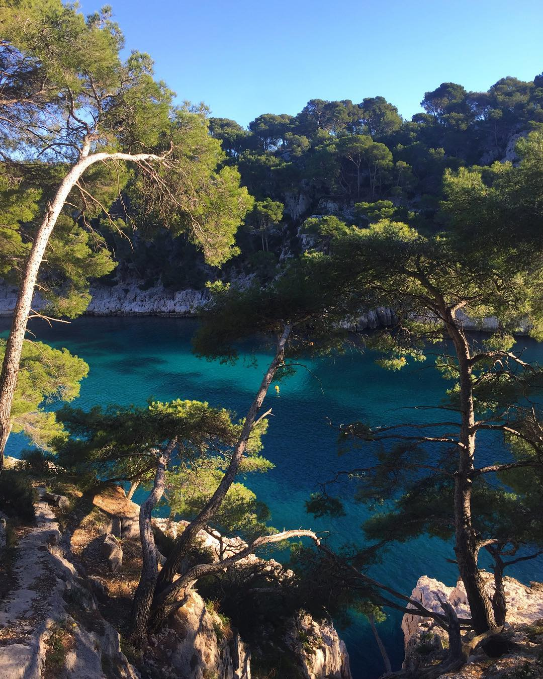 It's not ideal being far from my parents and close friends, but spending time in France I am able to reconnect with the French side of my family, and make new lifelong friends. Pic is in the Calanques National Park, in the South of France.
