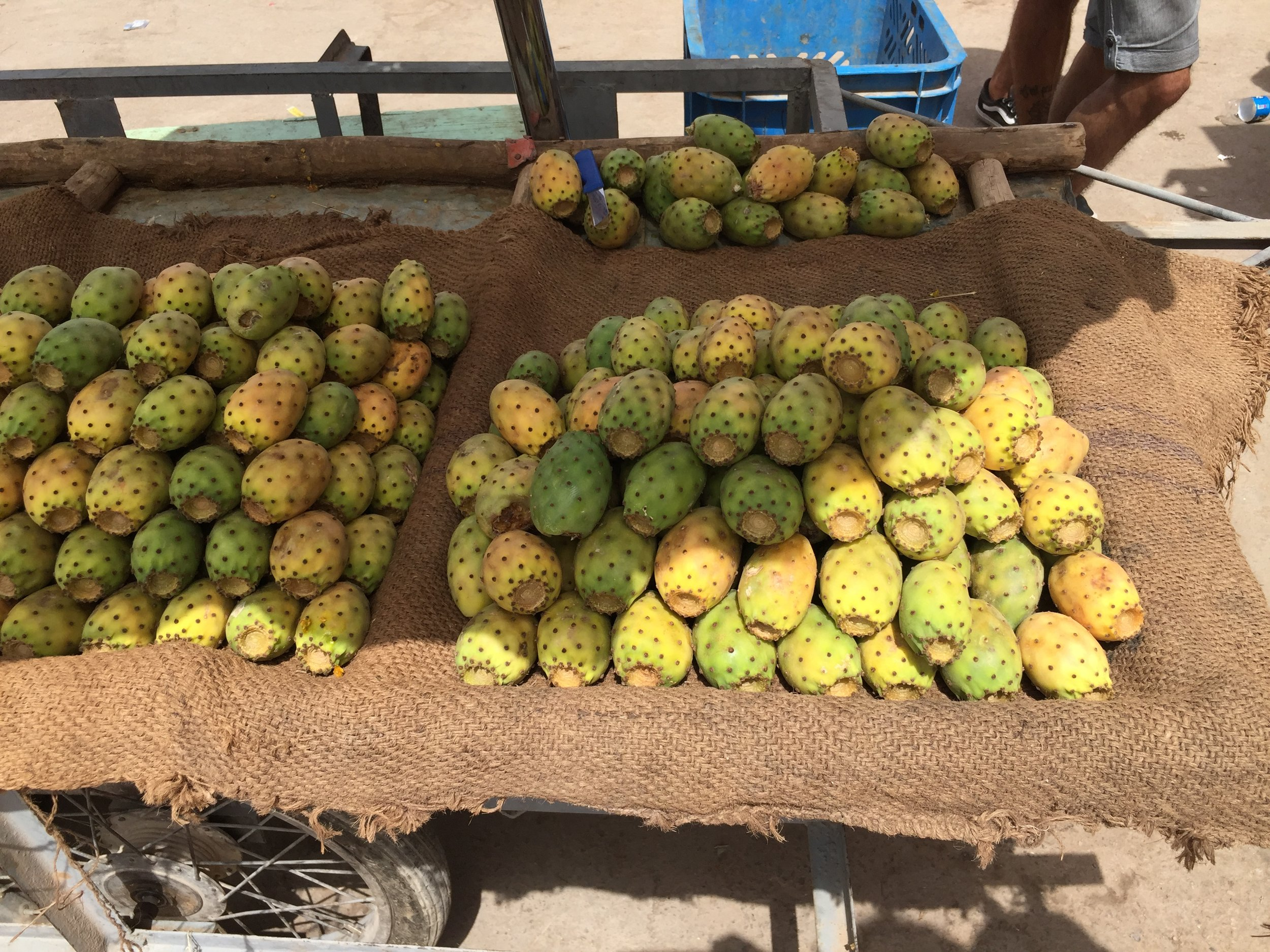 Prickly pear cactus fruit, sweet fruit but prickly local attitude.