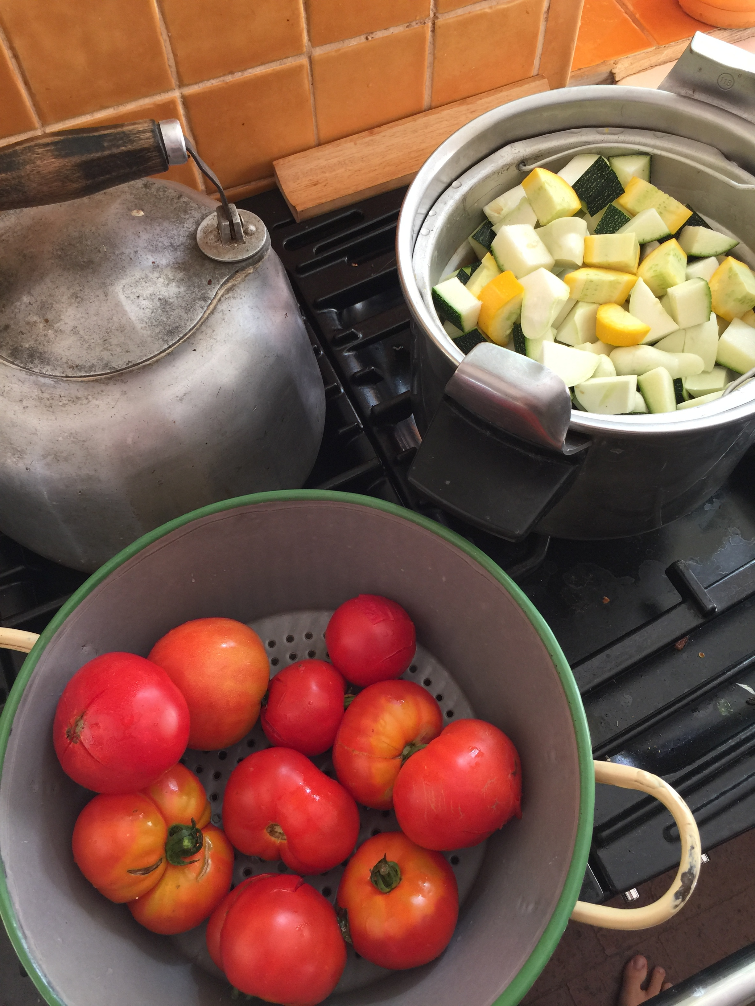 By steaming the vegetables and peeling/ seeding the tomatoes, you're increasing digestibility. This isn't necessary, but ancestrally it was common practice with tomatoes.