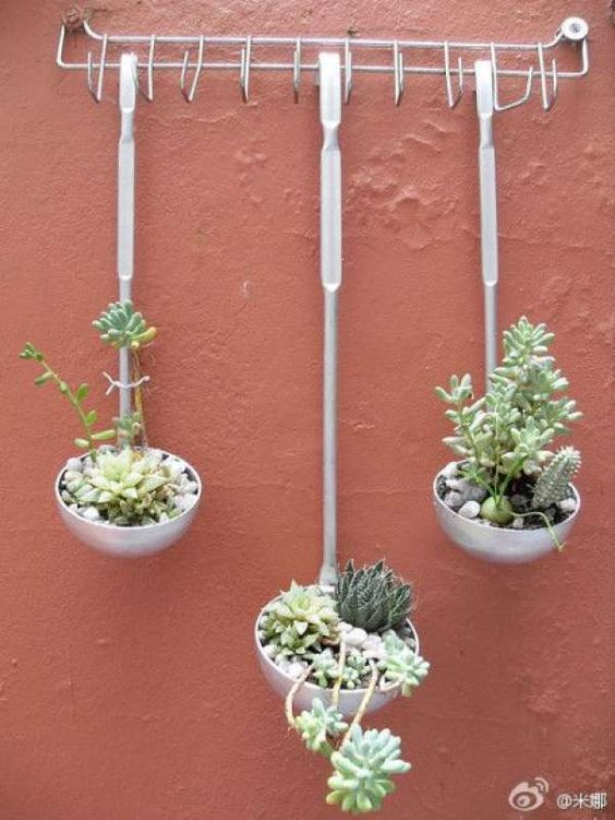 Kitchen Ware - Want to add a little spice to your kitchen? Then try adding succulents into your old ladles. It makes for a unexpected addtion to any rustic kitchen.
