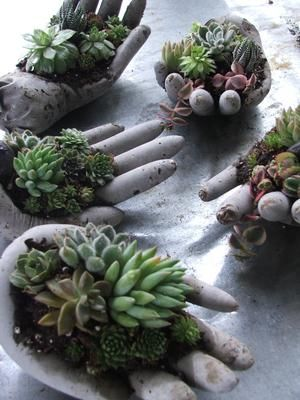 Helping Hand - We all need an extra hand sometimes here and there, why not one for your plants too! Vintage hands are a great and creative way to showcase tiny collections of succulents.