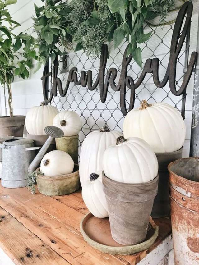 "Gardening - Who says that platers and watering cans should stay outside? We think ""planting"" your pumpkins is a fantastic idea. It makes the perfect transition when the weather gets cooler."