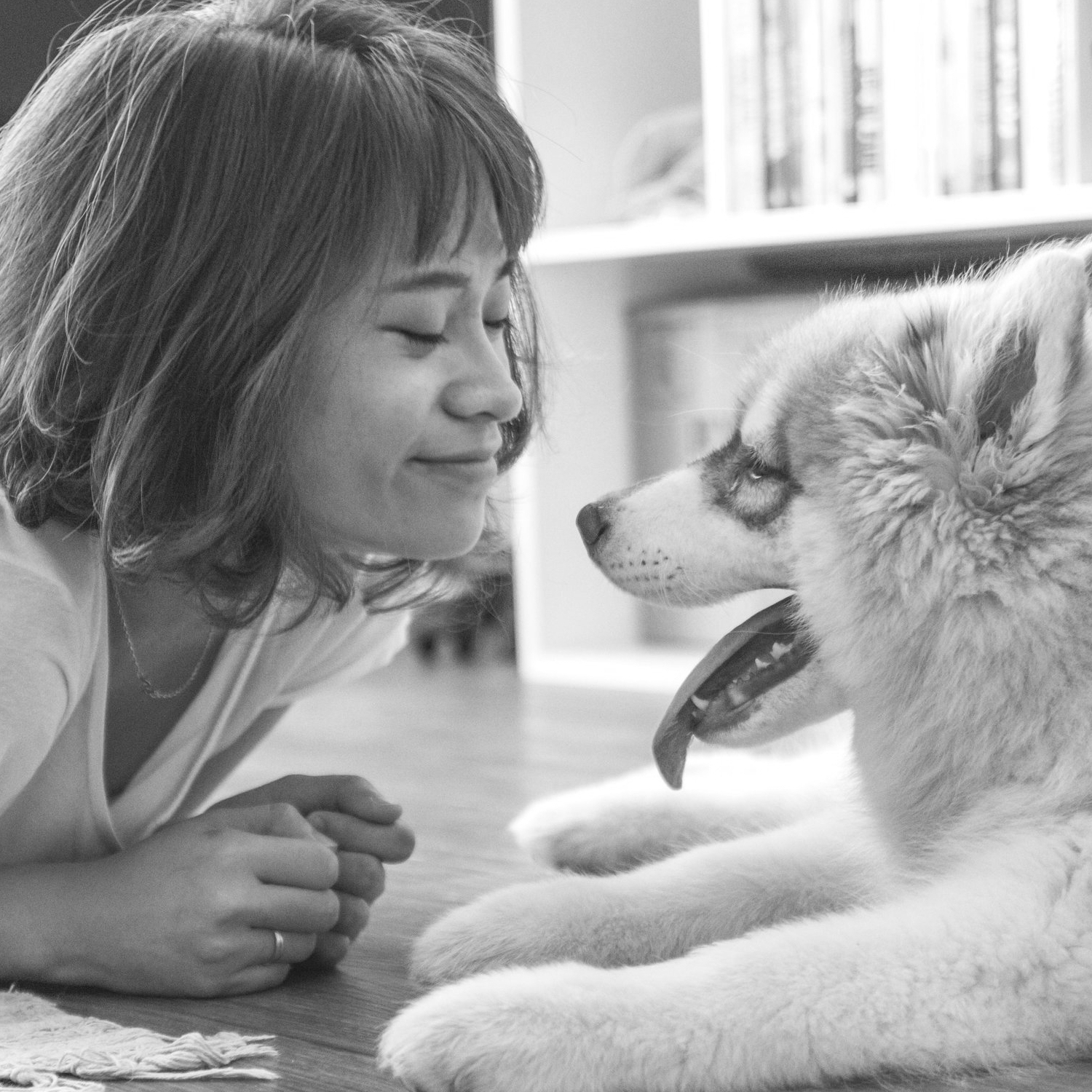 Foster Care - By fostering a pet, you are allowing us to save even more animals by making space available in our adoption center.We provide the medical care; your responsibilities are to provide a safe, secure, and stable environment.