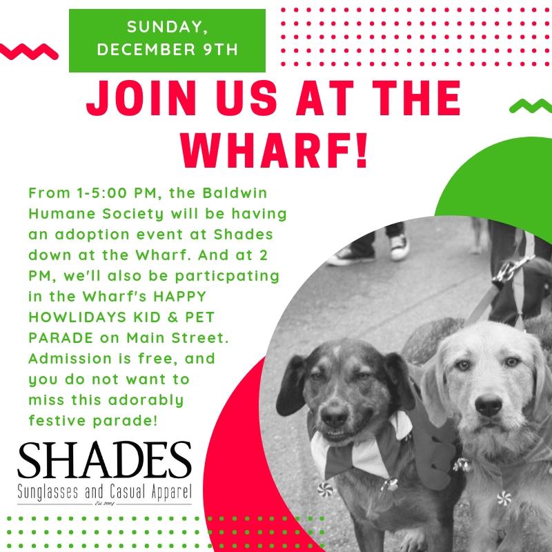 Wharf Pet Parade.jpg