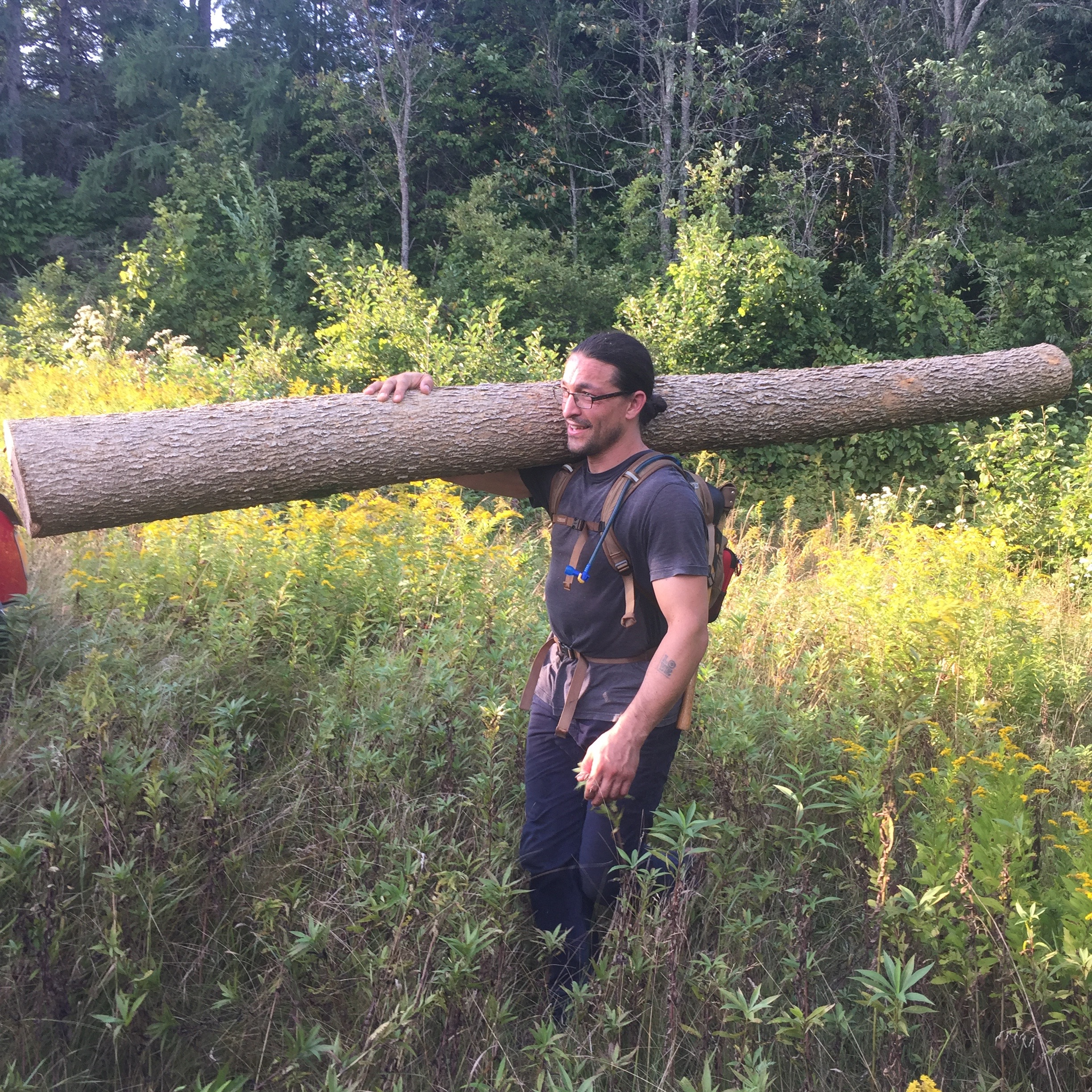 Gabriel Frey hauls logs out of the woods,