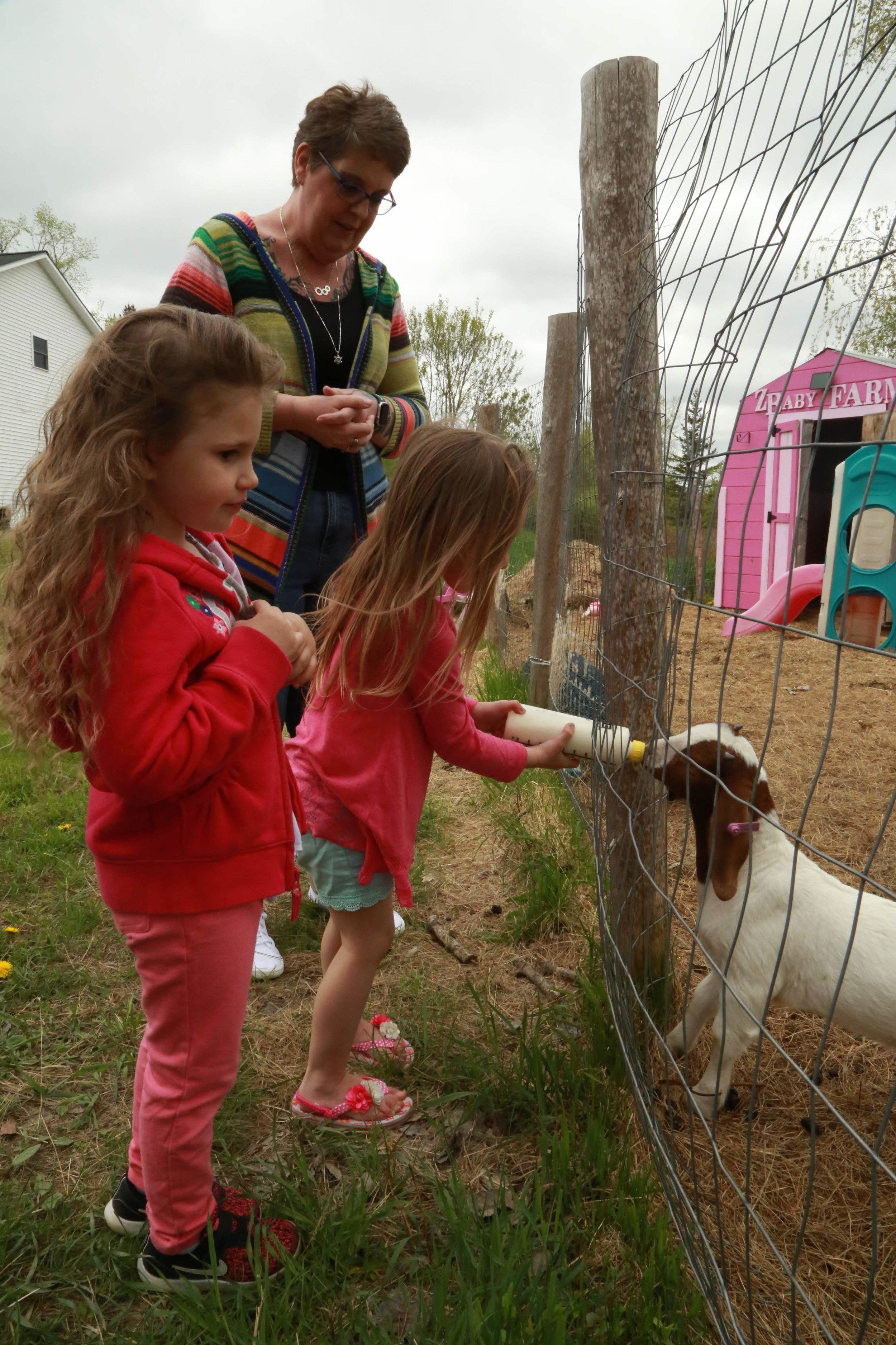 Children feed goats at Lots of Tots in Princeton.