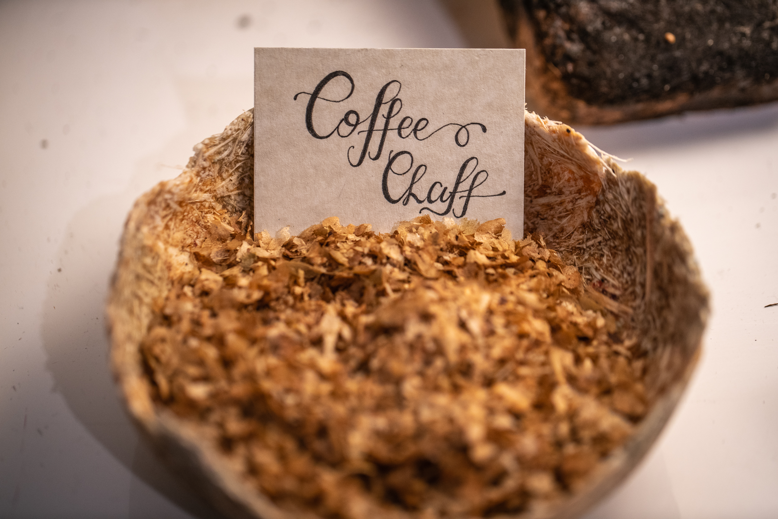 MaterialRevolution_KrisKish-17.jpg