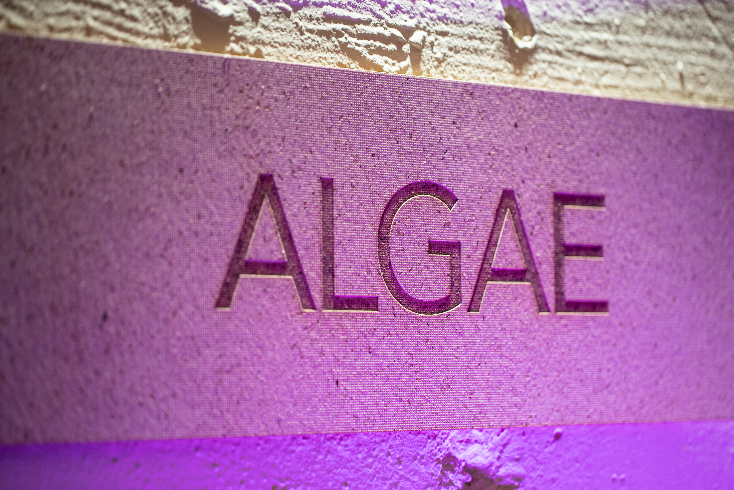 MaterialRevolution_KrisKish-45.jpg
