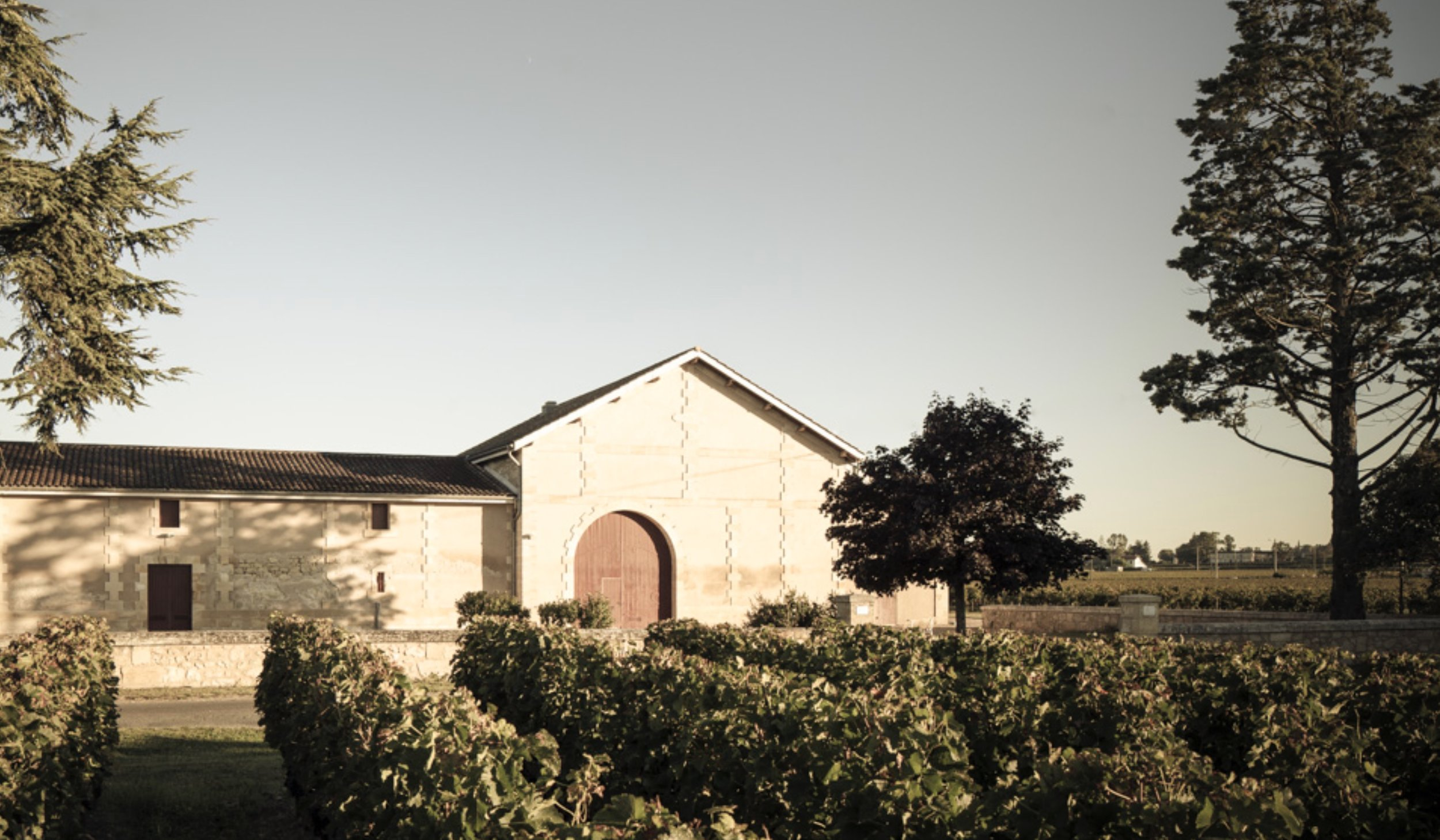 France_Chateau Mondorion_winery image.jpg
