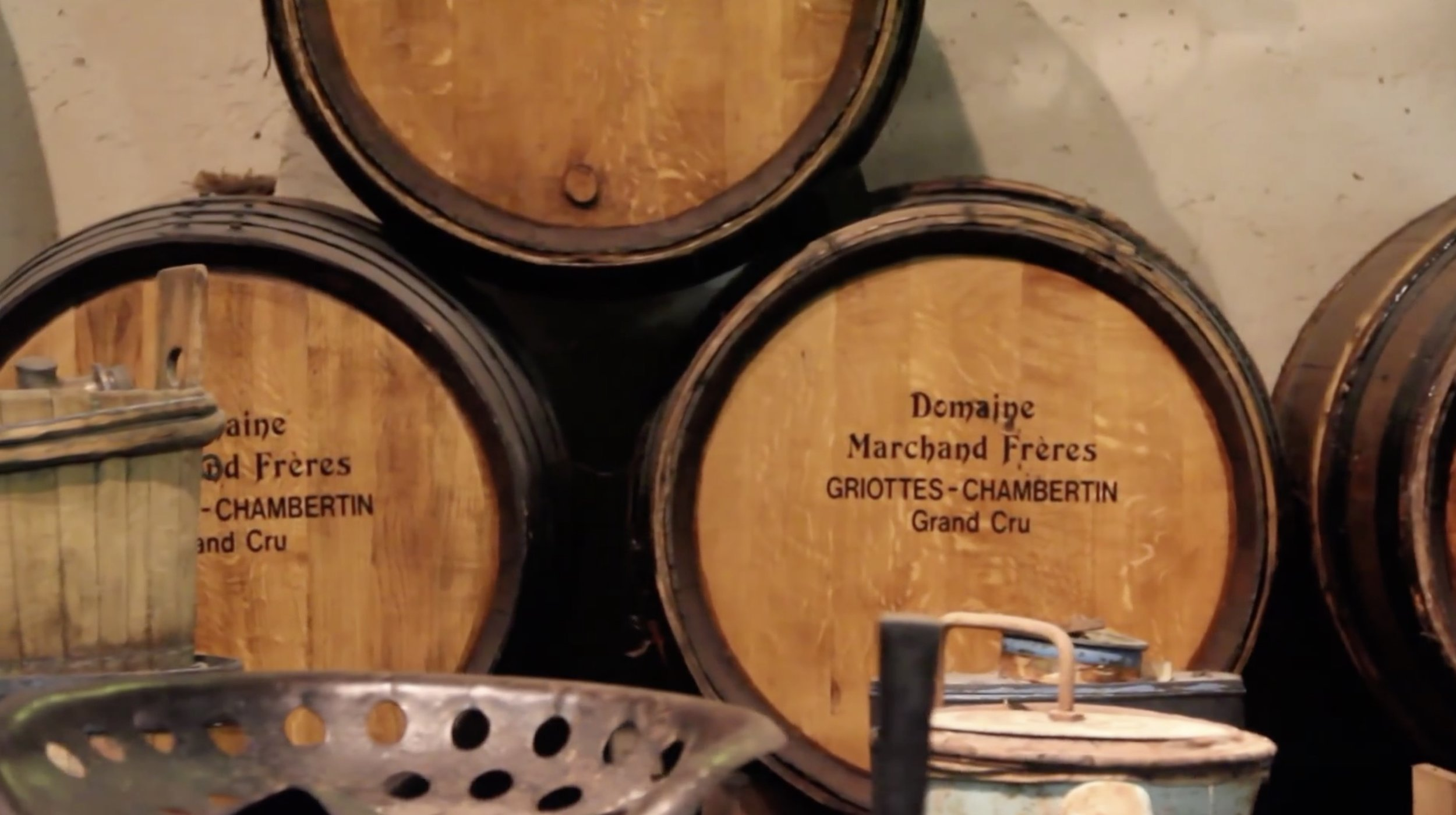 France_Jean-Philippe Marchand_Winery Image.jpg