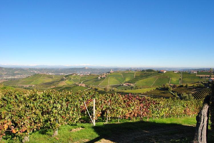 Italy_Cantina+Del+Nebbiolo+Winery+image.jpg