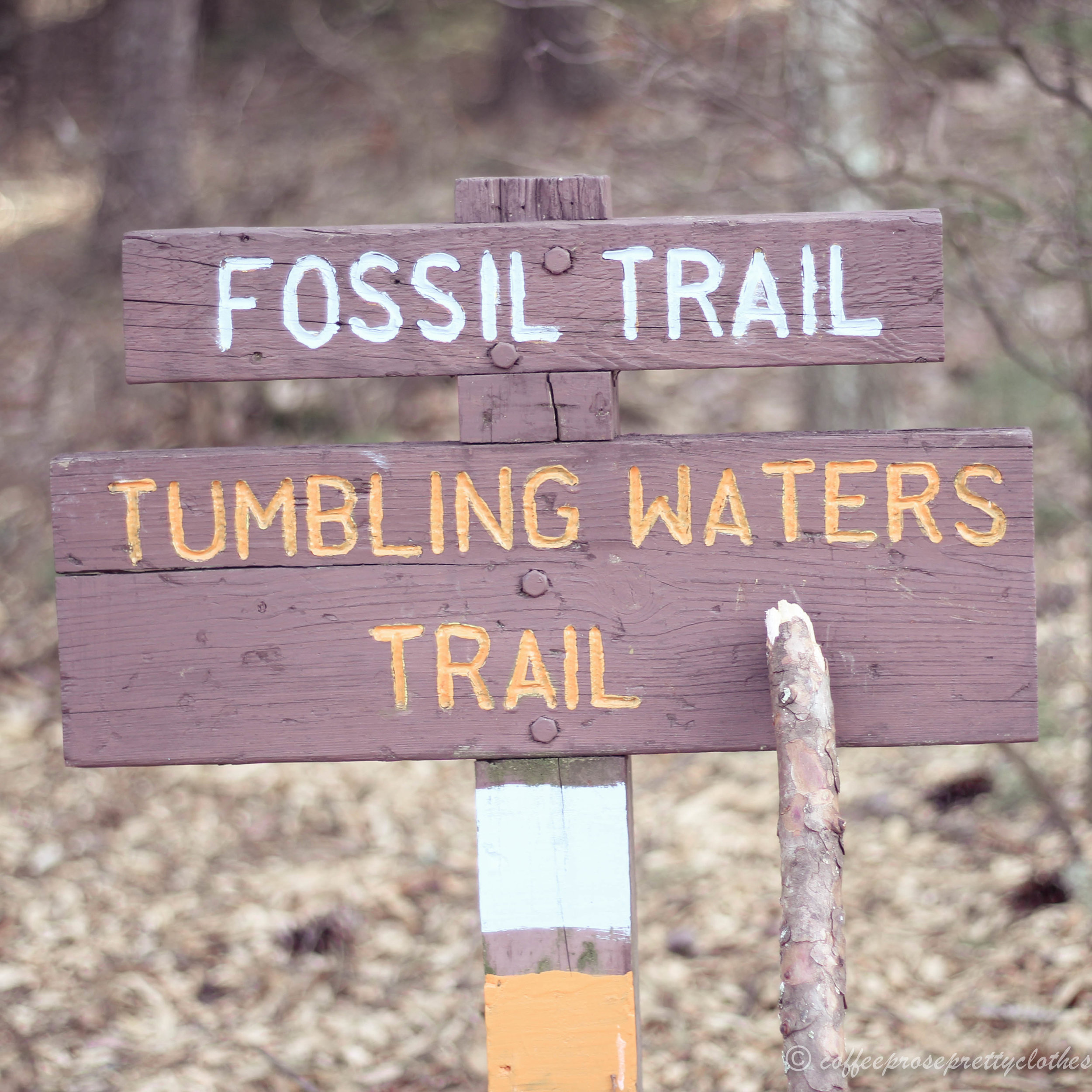 Poconos Mountain hiking, Fossil Trail, Tumbling Waters Trail